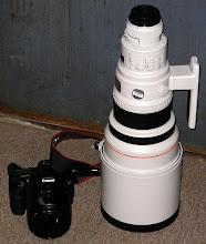 Photo: 400mm f/2.8 Too Big