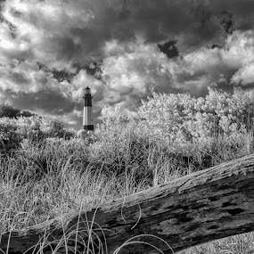 Tybee Lighthouse Infrared by Jason Lemley - Landscapes Beaches ( clouds, sand, sand dunes, infrared, black & white, lighthouse, ocean, tybee island )