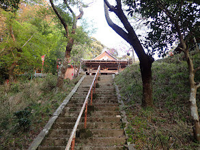 階段を登る
