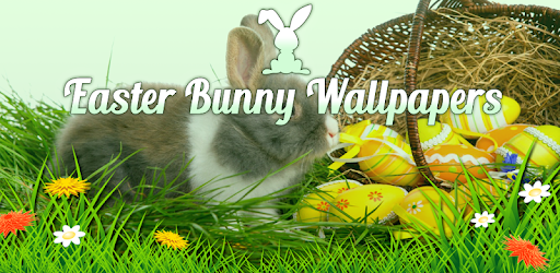 Easter Bunny Wallpapers Apps On Google Play