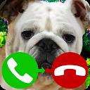 fake call dog game APK
