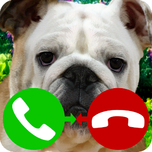 fake call dog for PC and MAC