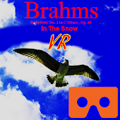 Brahms in the Snow VR
