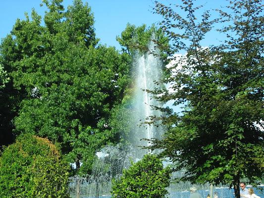 fontana di Arona di archiviobesozzi