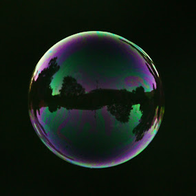 Bubble by Tanya Rossi - Artistic Objects Other Objects ( bubble, bubbles, floating )