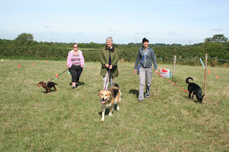 Photo: DogBasics Fun Day 2013 - the brave 3 who ran the Loopyloop race. Cate with Mack Cocker, Anne with Gretl Golden X and Miriam with Daffy Border Collie. Are they looking a little bit green?!