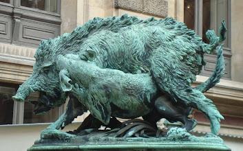 Photo: Wild boar in Louvre courtyard