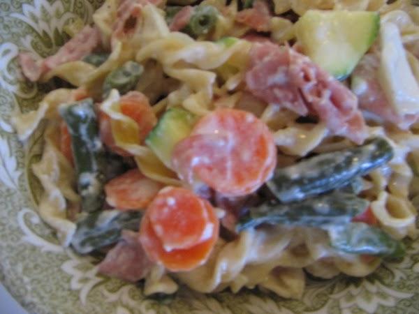 Pasta Medley With Alfredo Sauce Recipe