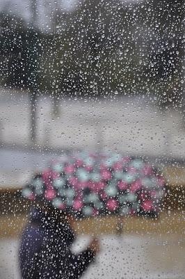 pioggia di tuorlo