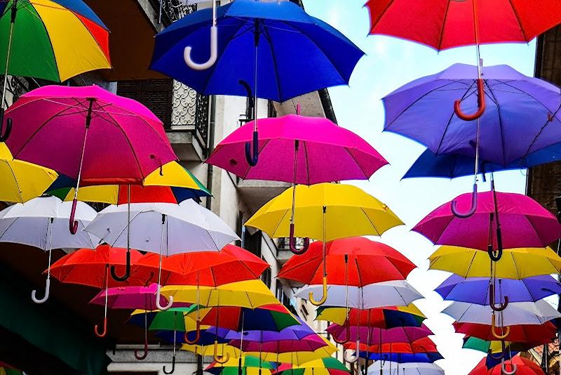 Speriamo non piova..!! di acquario