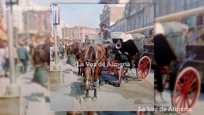 La parada de coches de caballos de la calle Obispo Orberá en el año 1966. Eran ya tiempos difíciles para los cocheros. Foto: Alejandro Buendía.