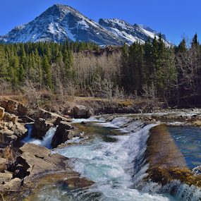 Swift Current Falls by Don Evjen - Landscapes Waterscapes ( pines, water, mountain, blue, montana, glacier park, falls, rock )