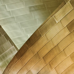 Rhythm by Paul Aparicio - Abstract Patterns ( frank gehry, abstract architecture, abstract photography, walt disney concert hall )