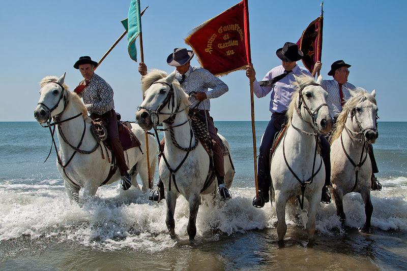 i cavalieri ..... di faranfaluca