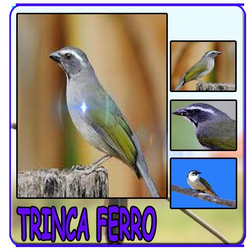 Mestre trinca ferro album completos screenshots 3