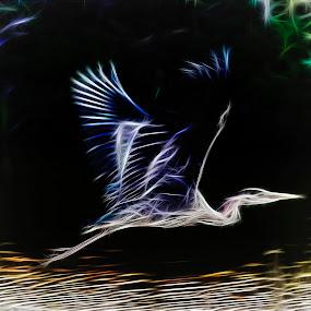 Harrow Heron by Peter Wyatt - Digital Art Abstract ( abstract, digitalart, flight, art, digital, heron )
