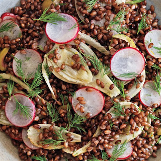 Black Barley, Fennel, and Radish Salad