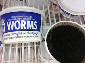 Photo: WORMS!  I have been to this WalMart 576,457 times and did not know there were WORMS for sale!!!