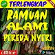 Ramuan Alami Pereda Nyeri Download on Windows