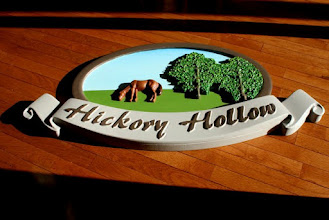 Photo: carved 3D hand painted sign virginaia www.nicecarvings.com