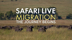 Safari Live: Migration thumbnail