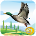Duck Hunting Unlimited icon