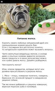 Мопс - выбор собаки - náhled