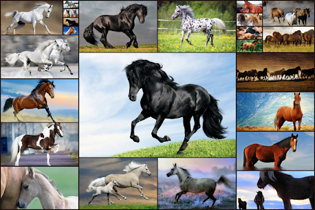 Horse Jigsaw Puzzles Game – For Kids & Adults 🐴 1