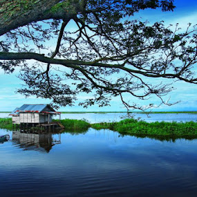 The house in Swamp Edge by Ikhsan Effendi - Landscapes Waterscapes