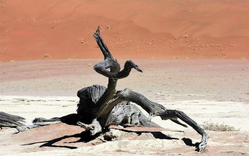 Natura morta di paolo-spagg