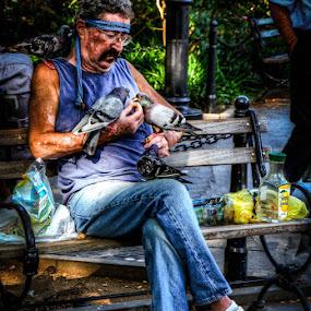 Paul, the Pigeon Man of Washington Square Park by Joe Palisi - People Street & Candids