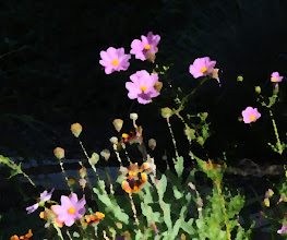 Photo: Palette knife (11/3/3) - cosmos and gaillardia