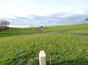 terrain à Saint-Aubin (40)