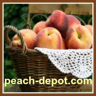 Gluten Free Peach Cobbler Dessert.