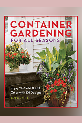 Container Gardening for all...