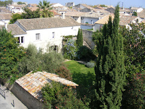 Photo: The view of the town from the Ramparts includes backyard gardens such as this one.