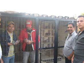 Photo: Dos compañeros colombófilos de Guanatos revisando dos de mis machos azulitos y otros dos compañeros colombófilos afuera de dos de mis palomares de cría