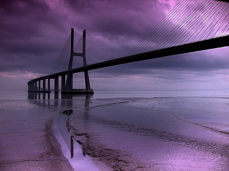 Vasco da Gama, Portugal by Joaquim Machado - Buildings & Architecture Bridges & Suspended Structures