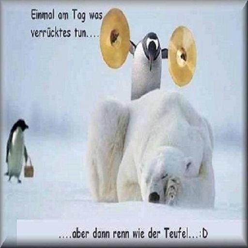 Whatsapp profilbilder lustige Lustige Bilder