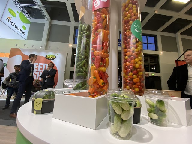 Verduras snack de Rijk Zwaan.