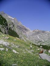 Photo: View towards Kanderfirn glacier