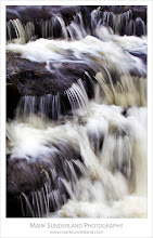 Photo: Redmire Force on the River Ure, Wensleydale, Yorkshire Dales, England