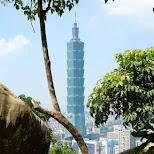 Taipei 101 from elephant mountain in Taipei, T'ai-pei county, Taiwan