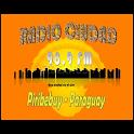 Radio Ciudad FM 98.9 FM icon