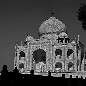 Taj Mahal by Dola Das - Buildings & Architecture Public & Historical ( architechture, nature, travel, historical, landscape, pwcbuilding,  )