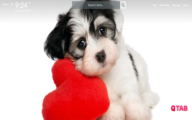 Cute Dogs Wallpapers HD Theme