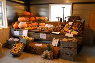 Photo: de winkel is goed gevuld; de helft van de opbrengst gaat naar de Stichting Vrienden Op Aarde