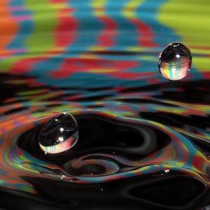 drops Feb 24 2012f1208.jpg