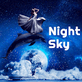 Night Sky Dolphin