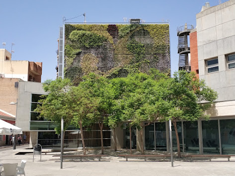 Jardín vertical del San Vicente del Raspeig